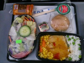 UA 79 March 2015 economy class meal